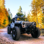 Jeep JK Wrangler (Moby) in the fall 2014