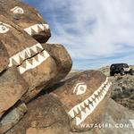 Living Rocks Exploration 03/04/16