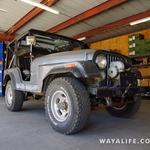 CJ : 1974 Jeep CJ5 Renegade